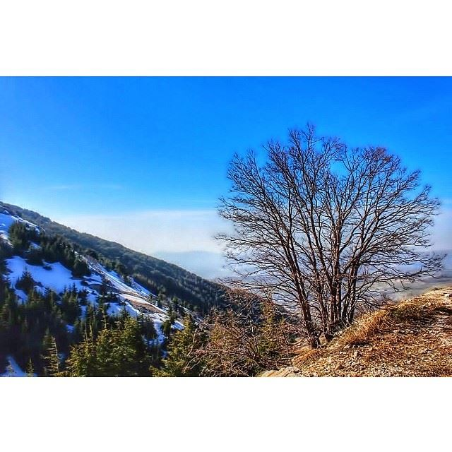 barouk lebanon landscape ...