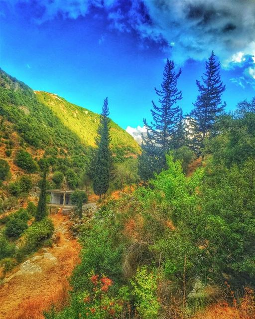 """"""" Over Every Mountain There Is A Path, Although It May Not Be Seen From... (Chabtîne, Liban-Nord, Lebanon)"""