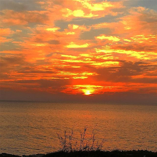 """"""" From Sunrise To Sunset, Let the LORD's Name Be Praised...""""... (Batrouun)"""
