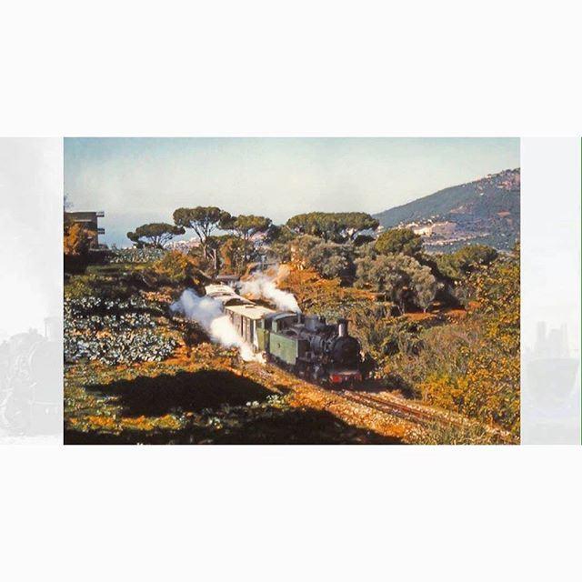 القطار في عاريا عام ١٩٦١ ،
