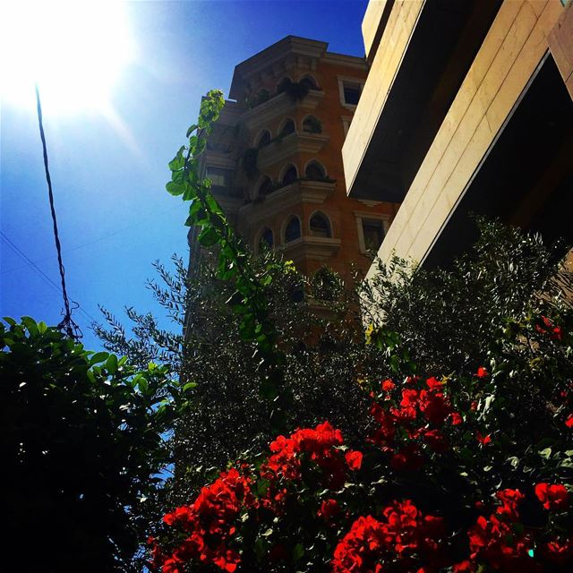 beirut love lebanon lebanonspotlights picoftheday tbt tagsforlike ... (Hamra Street, Beirut)