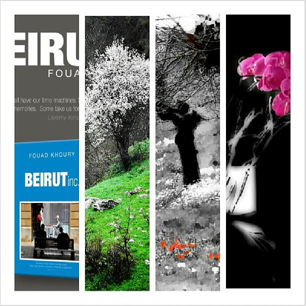 Z book. BEIRUTinc. beirut city ighype instacanvas instaprints ...