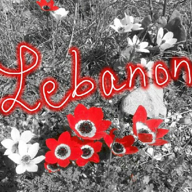 To you who's far away... lebanon picoftheday photooftheday ...