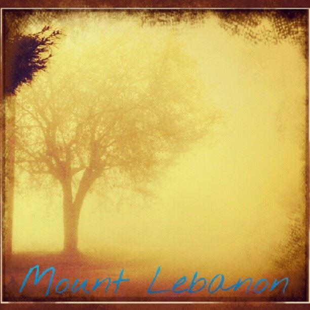 My future ... instagram instamood instacanvas instaprints ...