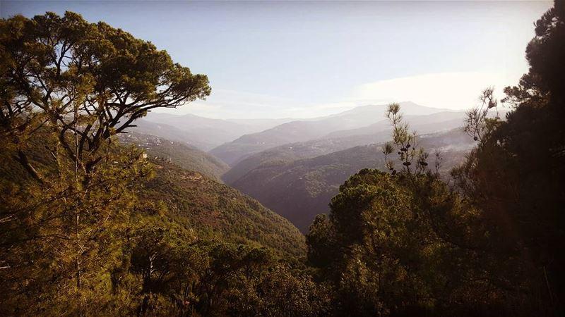 brummana mountlebanon hikingtrail hikingdogsofinstagram hike hike365... (Beit Mery Hills)