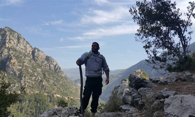 Hiking with coach Roy 💪👌😎 lebanon naturelovers gowild forest ...