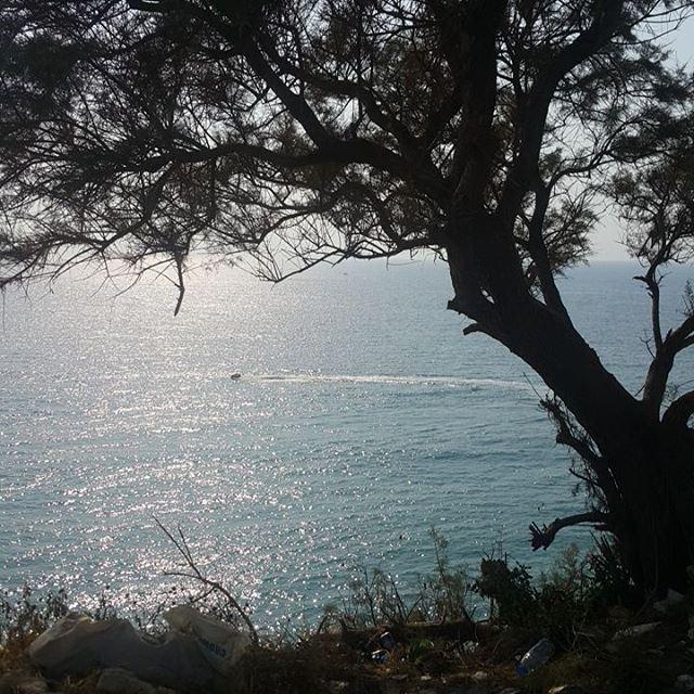 Das Meer naturelovers livelovelebanon livelovejbeil sea ...