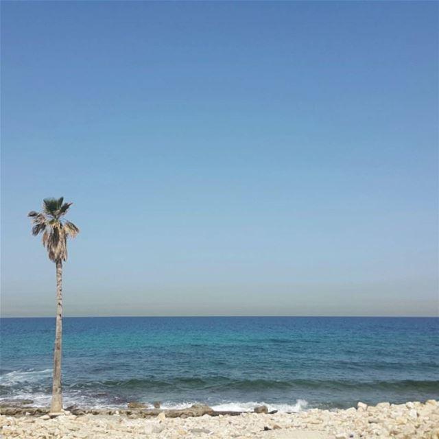 Maldives? naqoura southlebanon lebanon naturelovers vitaminsea sea ...