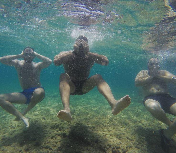 Fun under the sun 🙈🙉🙊 3monkeys funny naturelovers livelovelebanon ...