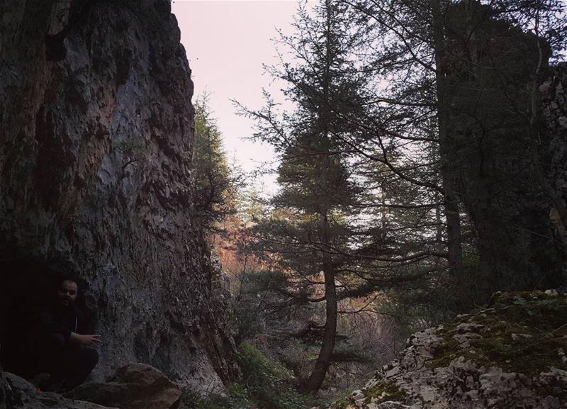 Have a nice eve niha batroun northlebanon nature naturelovers cedars...