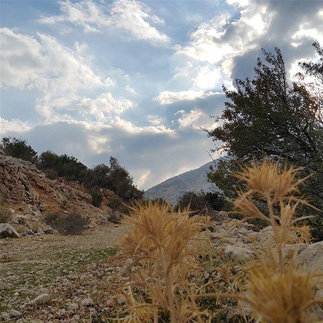 skylineextremesports hiking bekaa chouf barouk ammiq hikingtrails ...
