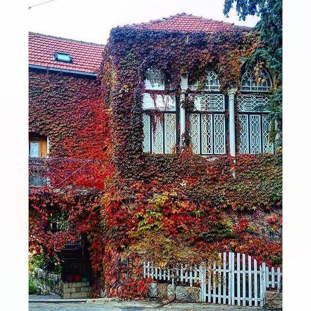 Douma Beautiful House,