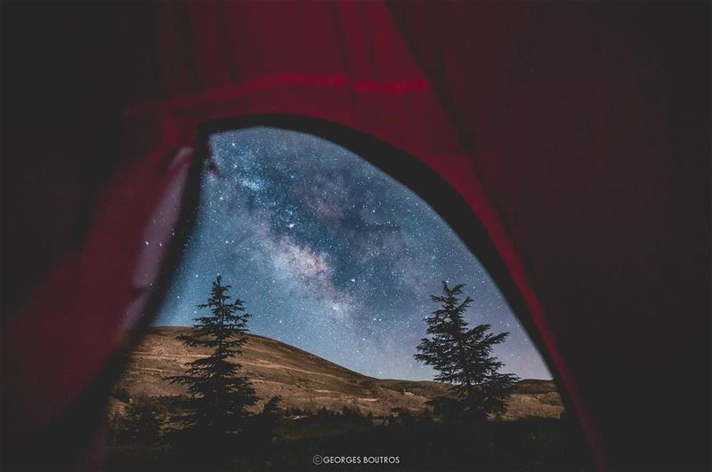 In a sky full of stars, she was his universe.✨ ... mylebanon ... (Cedars of God)