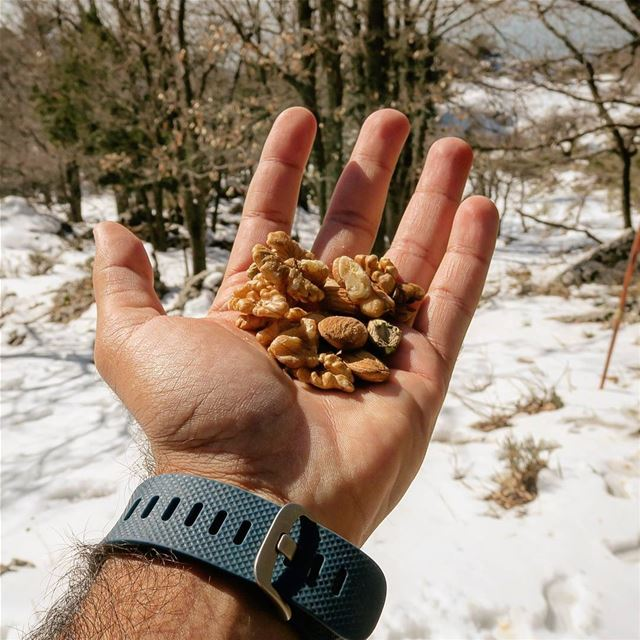 Give & Take. crunchy nuts pleasure snack hike nature outdoors ...