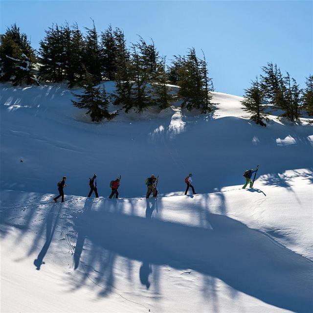 Lead the way lebanon barouk baroukcedars shouf shadow snow ... (Shouf Biosphere Reserve)