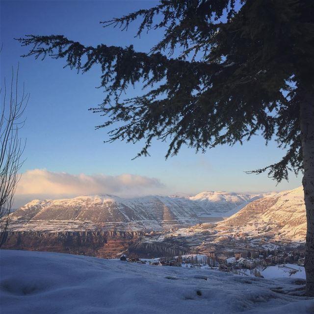 Dear Leb❄️💎❄️💎❄️💎 lebanon livelovelebanon faraya mountains ... (Faraya Mzaar)