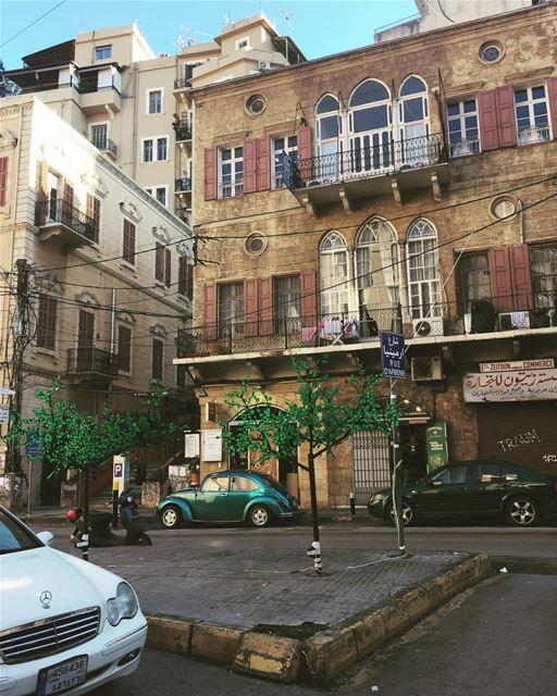 Green - city & plastic - trees lebanon beirut livelovelebanon ... (Beirut, Lebanon)