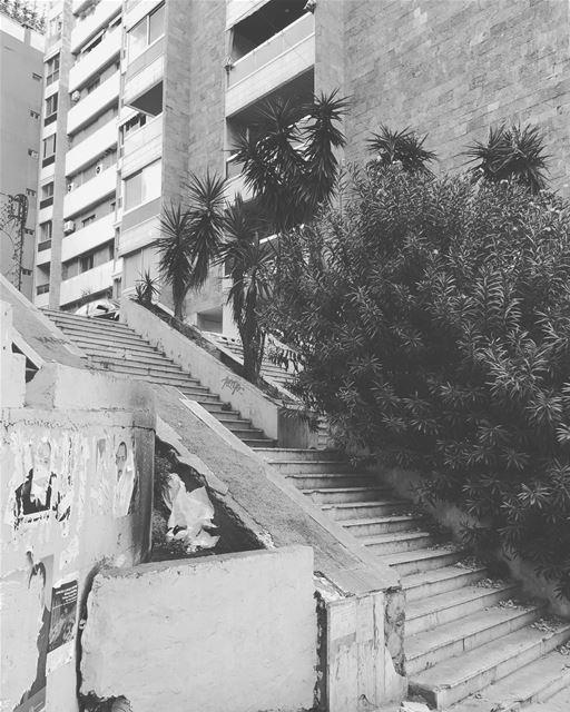 Concrete & plants. beirut lebanon achrafieh architecture contrast ... (Achrafieh, Lebanon)