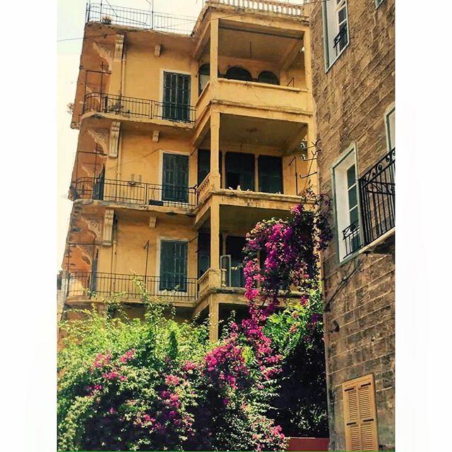 Good morning from Beirut Achrafieh,