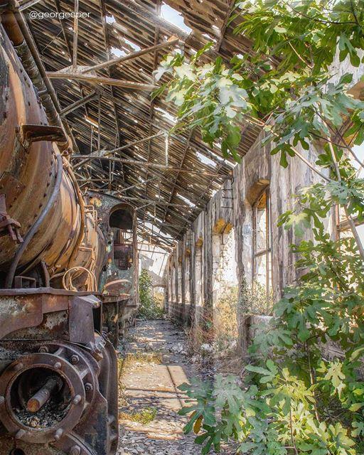 www.facebook.com/georgesper.... proudlylebanese beautifullebanon ... (Tripoli Train Station)
