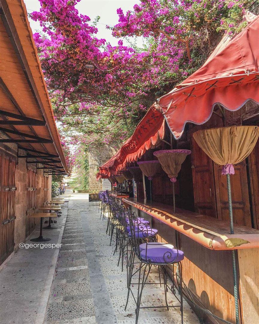 Good day 😍 From Byblos.... proudlylebanese beautifullebanon ... (Byblos, Lebanon)