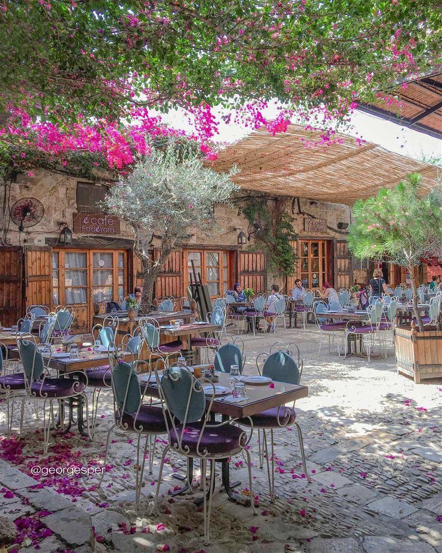 Summer Freshness 🌿 Happy Monday .... proudlylebanese ... (Byblos, Lebanon)