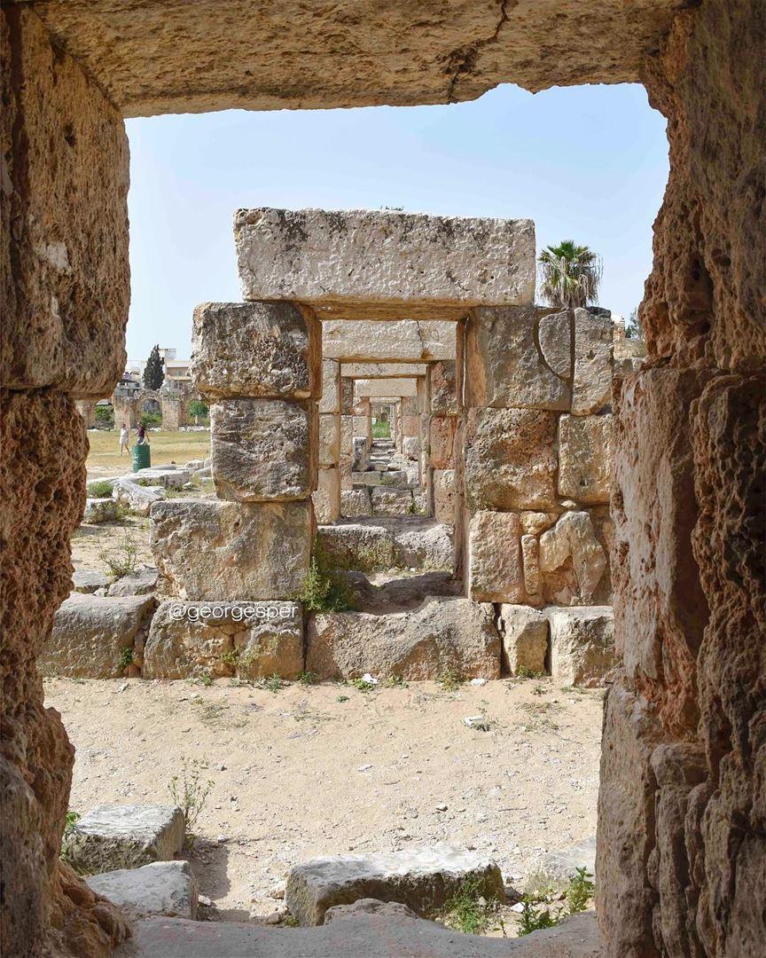 Roman forum, Tyre proudlylebanese beautifullebanon livelovebeirut ... (Tyre, Lebanon)