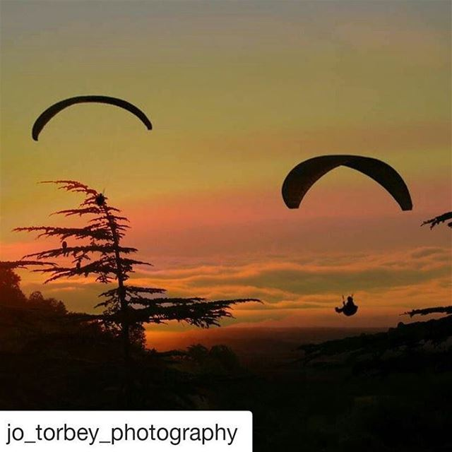 Repost @jo_torbey_photography with @repostapp・・・ liveloveehden ...