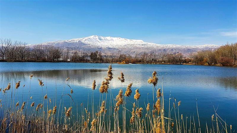 February visions landscape landscape_captures landscapephotography ... (Taanayel Lake)