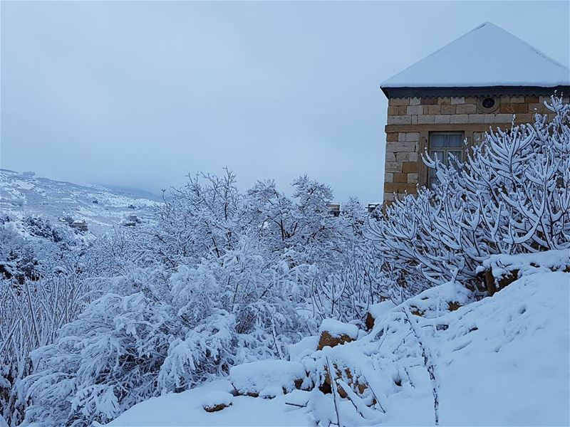 Old but Gold faraya snow storm lebanon mountains freshsnow old ... (Faraya, Mont-Liban, Lebanon)