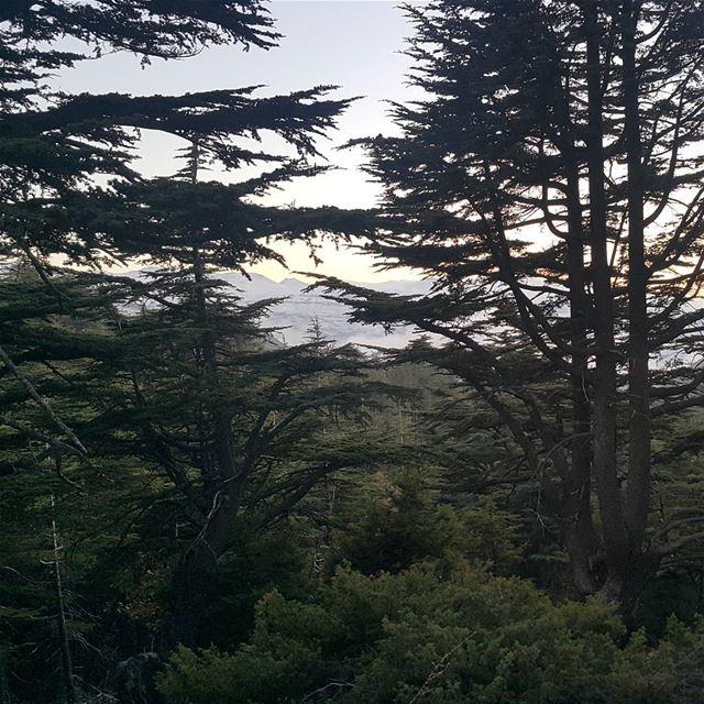 من هون نحنا يا بشر من هون lebanon naturelovers amazing adventure ...