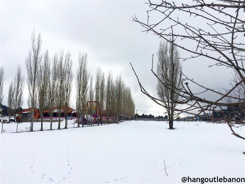 Don't stay at home this weekend, Go reboost your spirit. Winter and snow... (Sahlet el Qammoua)