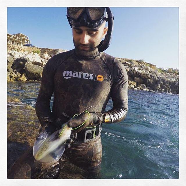 Nice Sunday catch! squid mares lebanon lebanesespearfishing life ... (Amchit)