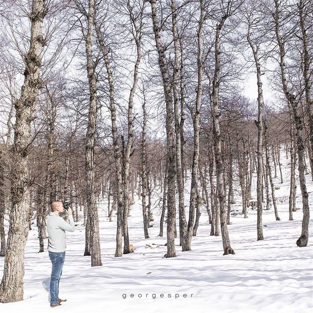 """Al Azer"" Forest, Lebanon 🇱🇧.... proudlylebanese beautifullebanon ... (`Akkar, Liban-Nord, Lebanon)"