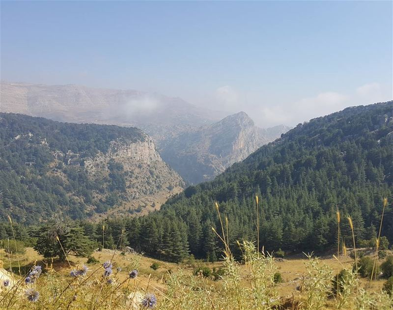 Keep hiking ✌ cedars lebanon reserve naturelovers trailslife ...