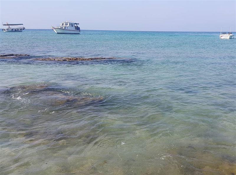 No filter needed rabbitsisland tripoli sea summer naturelovers ...
