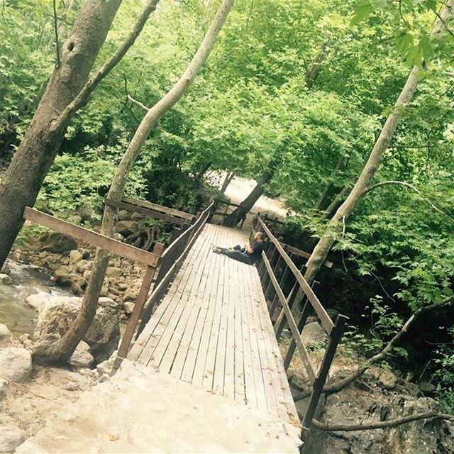 Ecotherapy naturelovers bridge river summer wadisalib ...