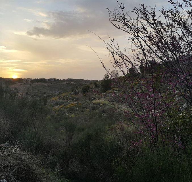 nofilter lebanon baadaran chouf sunset lebanesesunset naturelovers ...