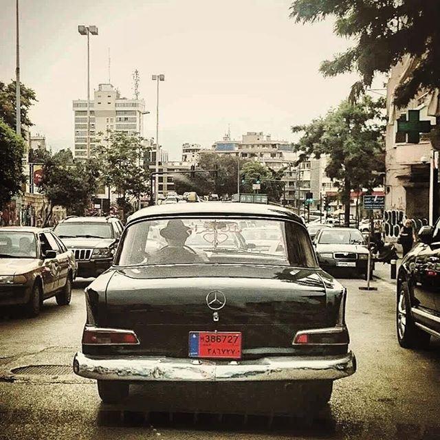 تاكسي ملك ❤️ الغرام 🎩🚖