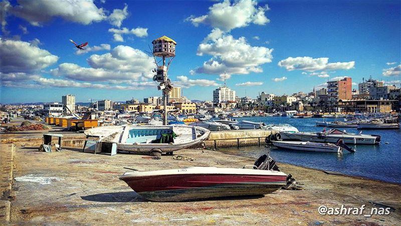رجعوا البحارةوالريح مربوطة عالياطر...والبحر مزيح تزييحوقلبي الناطر ناطر. (Tyre Fishermen Port.)