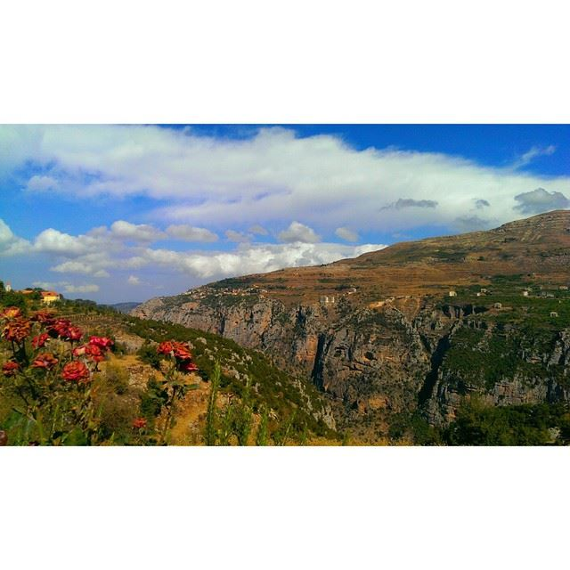 hasroun  lebanon  nature  arz  livelovelebanon  wearelebanon ... (Hasroun Rose Of The Mountain)
