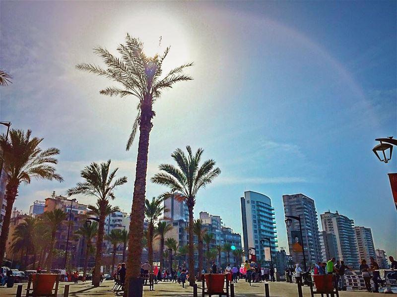 بيروت (عين المريسة)