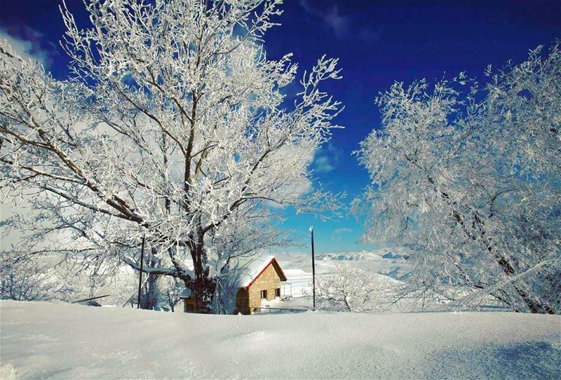 Sawfar-Lebanon by @reuters🏡🇱🇧 lebanon lebanese lebnen sawfar snow ...