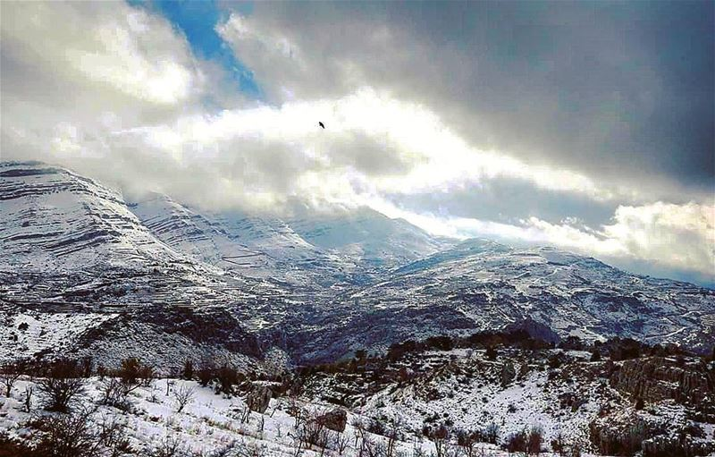 Tannourin -Lebanon by@reuters lebanon lebanese tannourine tanourine ت