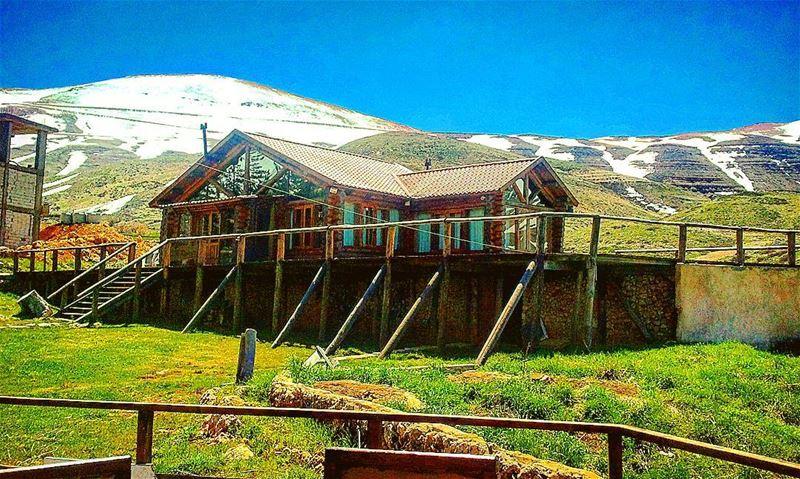 Auberge des cedres Lebanon- 25 April 2013😊 lebanon lebanese cedres ...