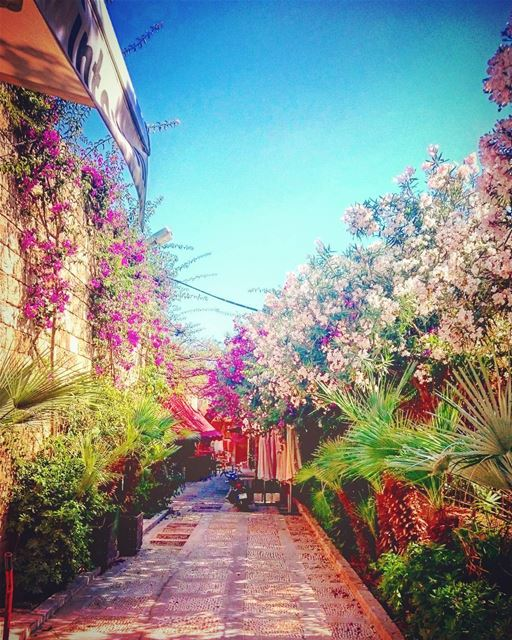 The narrow ways can take us also to heaven! lebanon lebanese jbeil ... (Byblos - Jbail بيبلوس/جبيل)