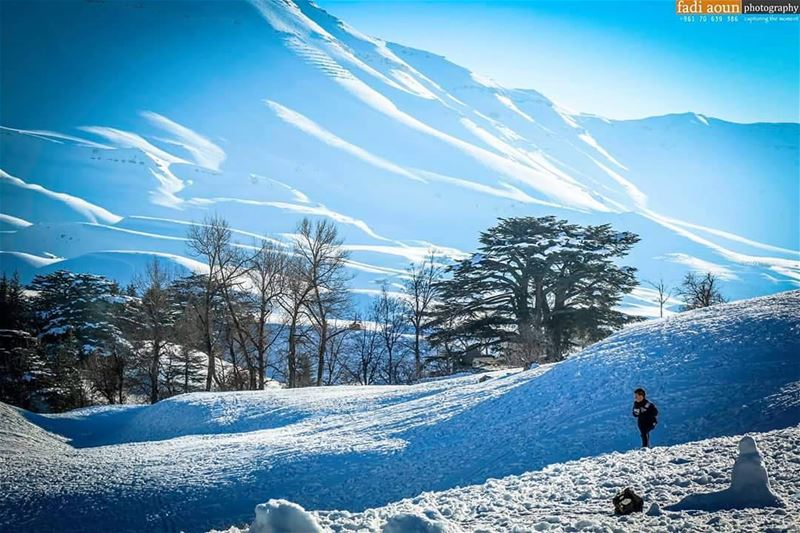 photo fadiaounphotography photoshooting lebanon snow cedars sky ...