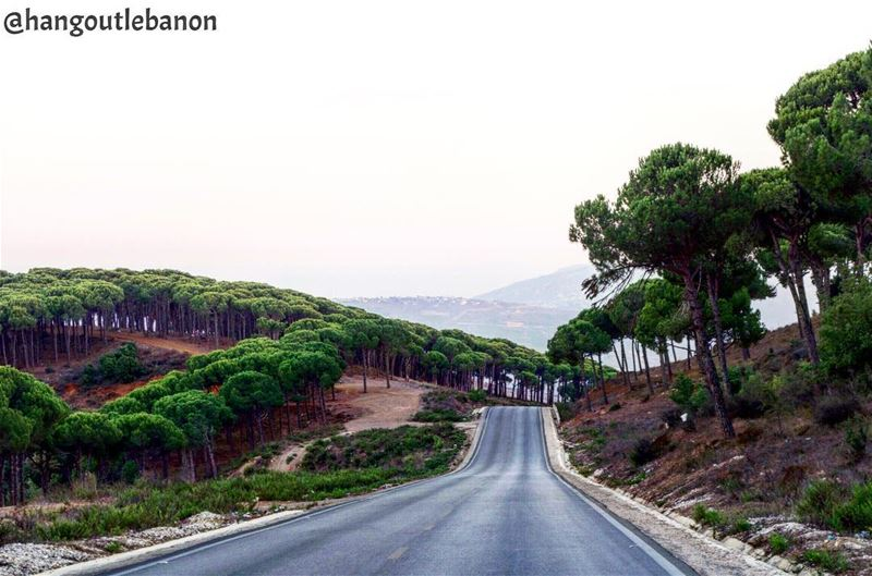 You don't need to travel to make  tourism, every inch of  Lebanon could be... (Jabal Al Rihan)