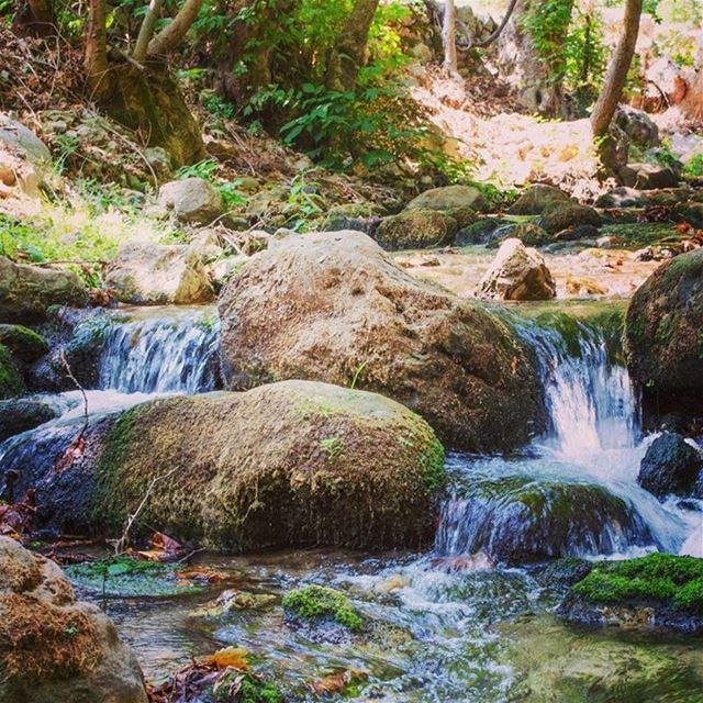 Stop and enjoy fresh cold water roadtrip --------------------... (Nahr El Joz)
