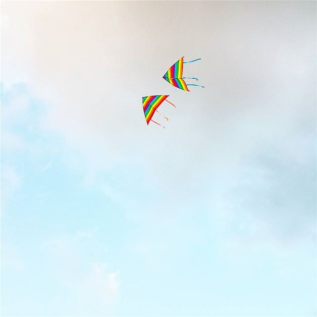 I tried to fly a while so high 🎶🎵 Direction Sky 🎼🌤🌈
